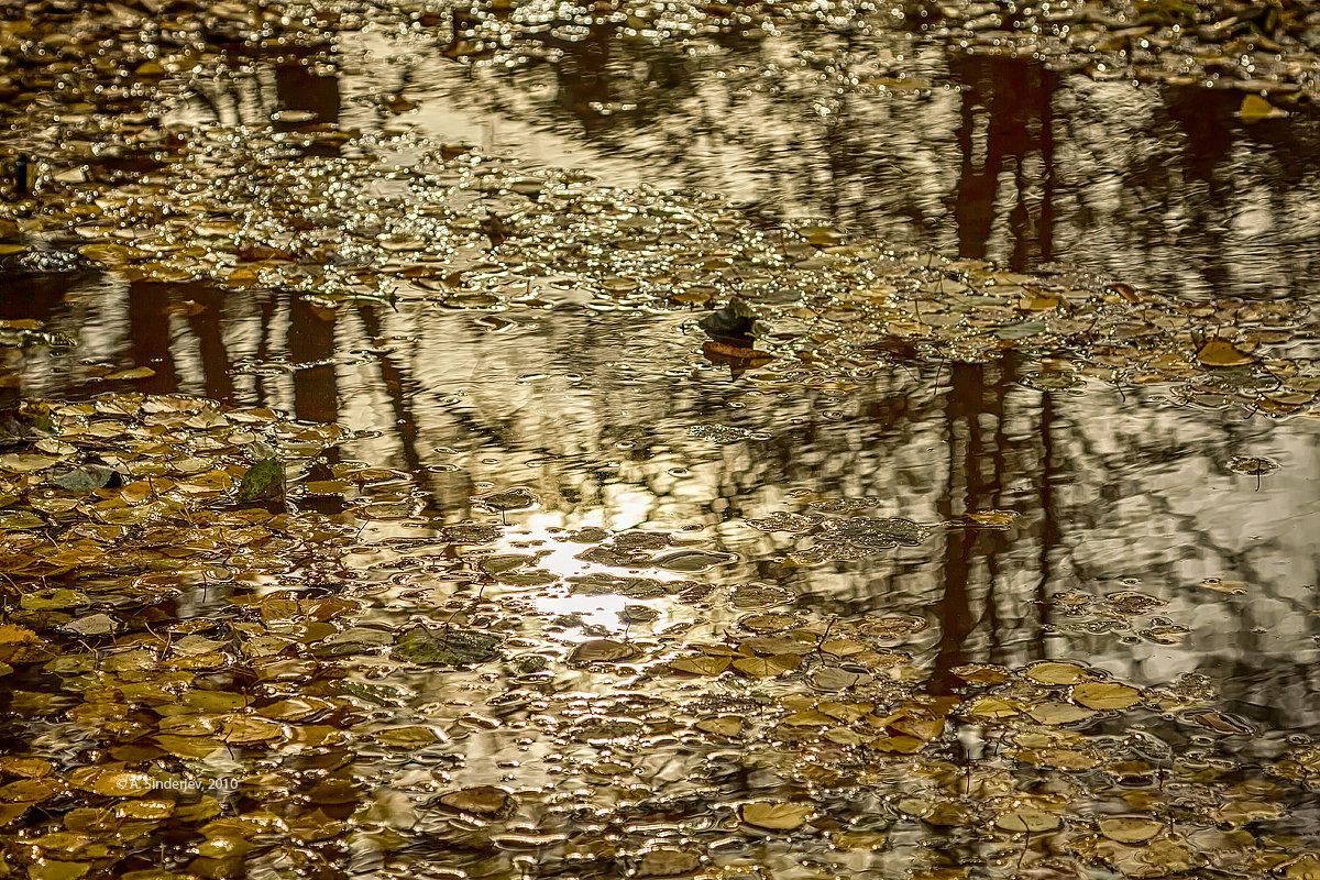 Осень в луже - Александр Синдерёв