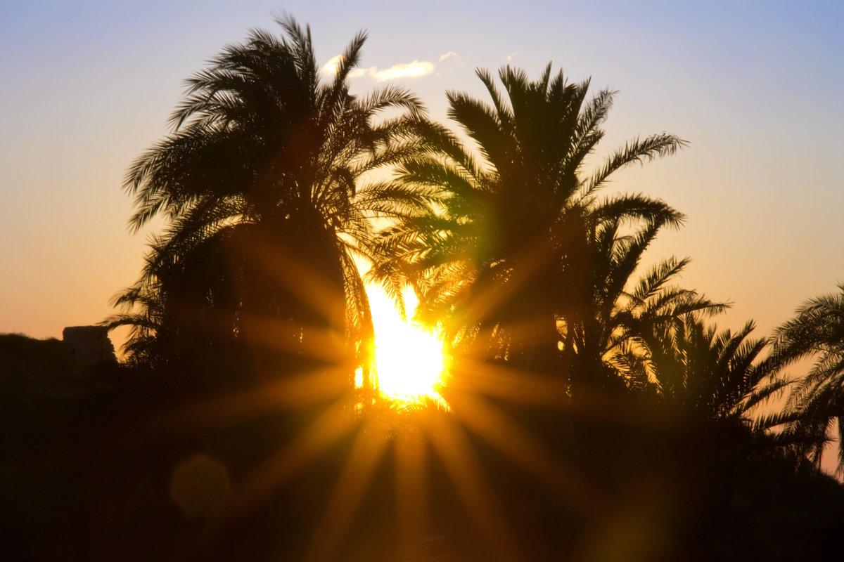 Солнышко лучистое - Ефим Журбин