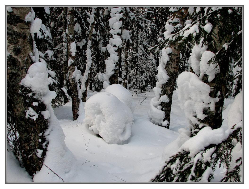 зима - Владимир ( Vovan50Nestor )