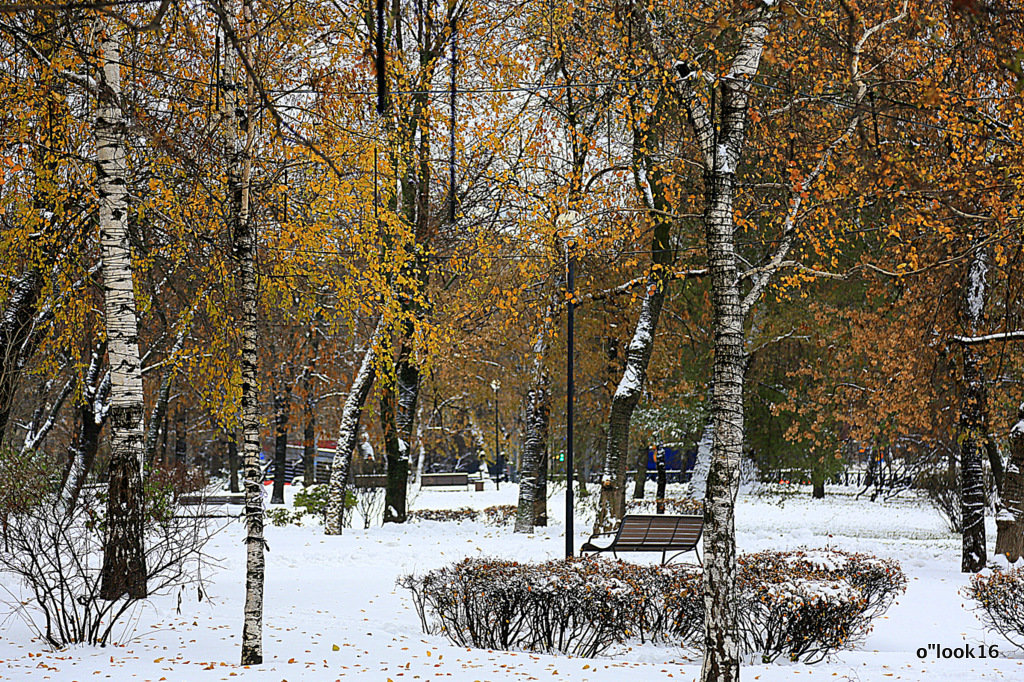 смена времён года в городе - Олег Лукьянов