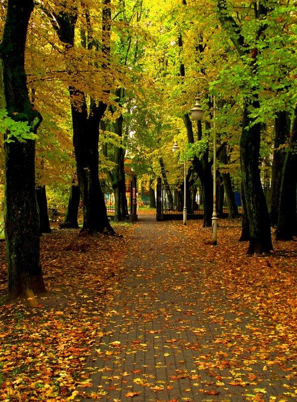Осенние дорожки - Сергей Карачин