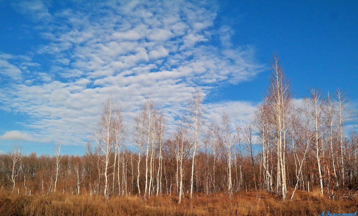 И в этот год осенняя погода стоит уж долго на дворе.. - Андрей Заломленков