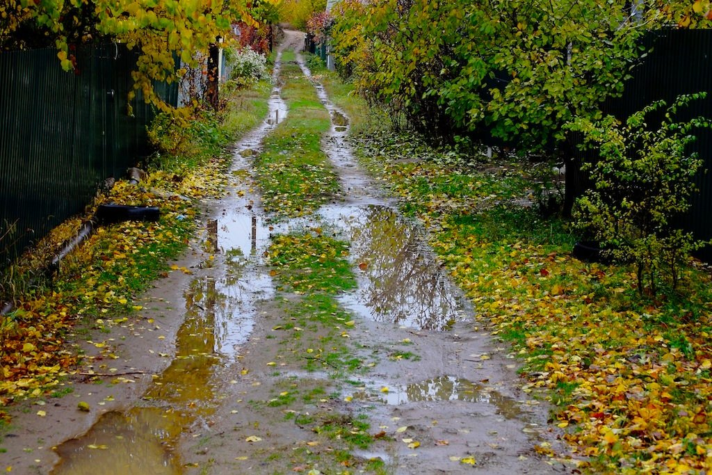 Поздняя осень на даче - Viktor Eremenko