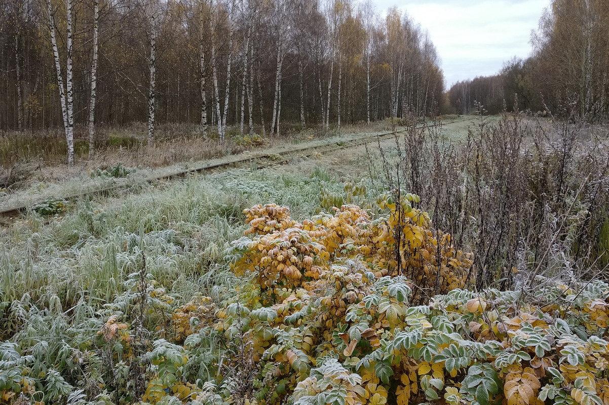 В морозном инее осеннего утра - Николай Белавин