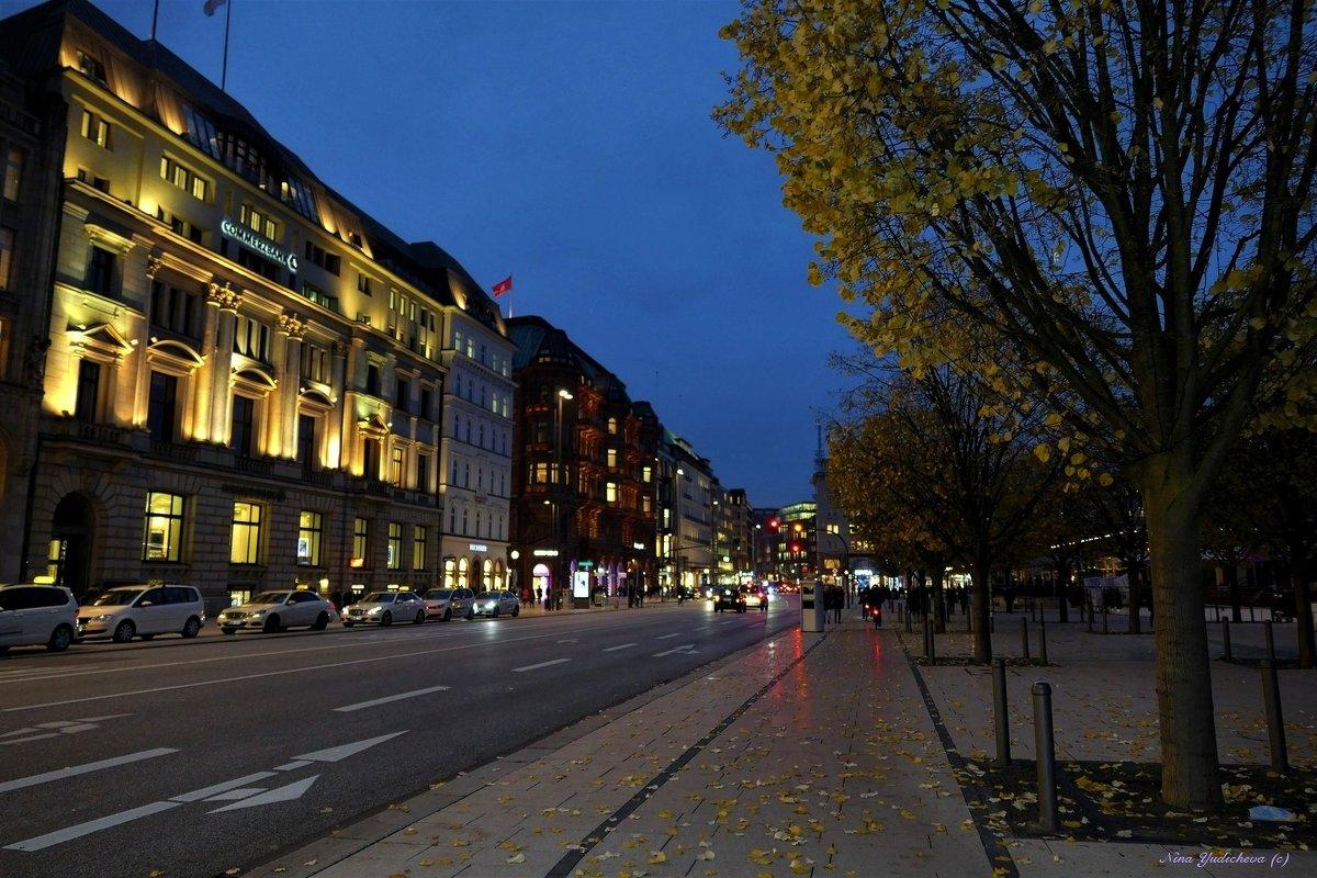Вечерний Гамбург - Nina Yudicheva