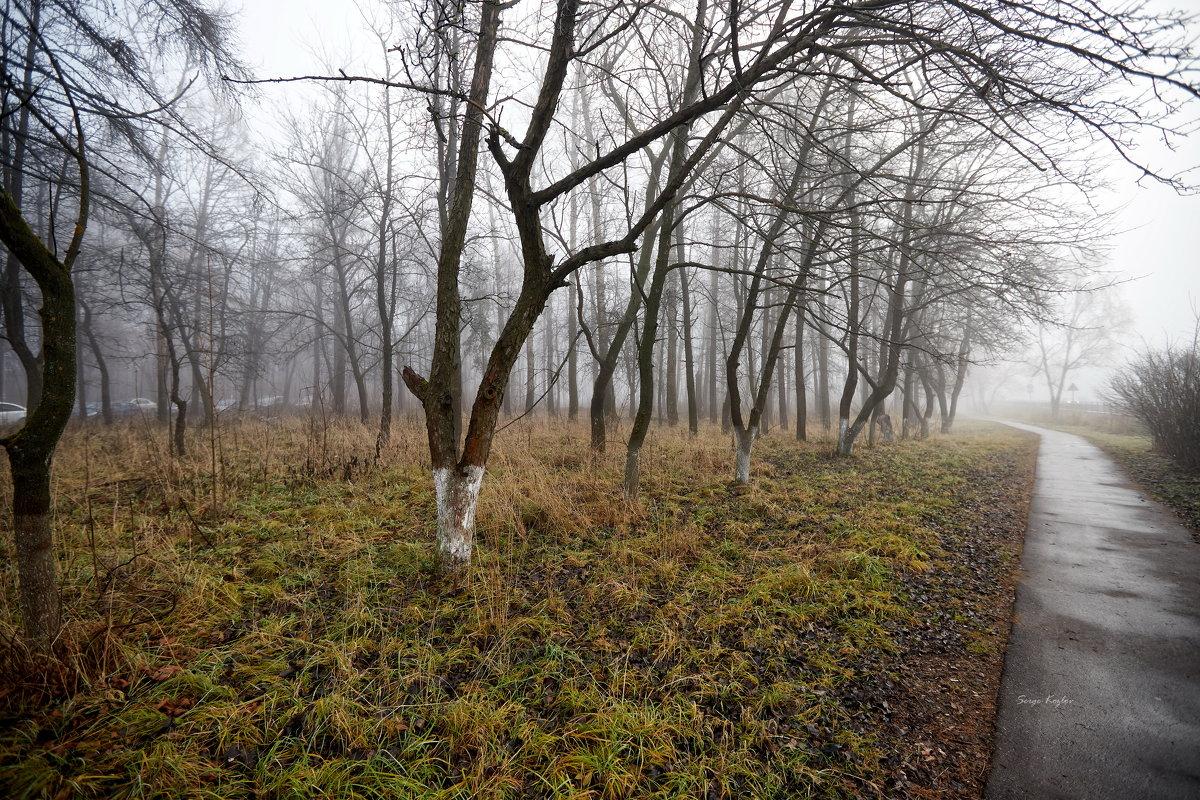 img_0998 - Сергей Козлов