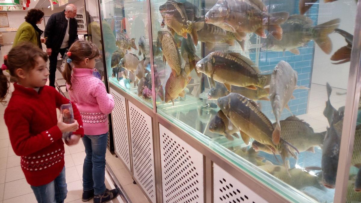 Рыбки в гастрономе... - Serg