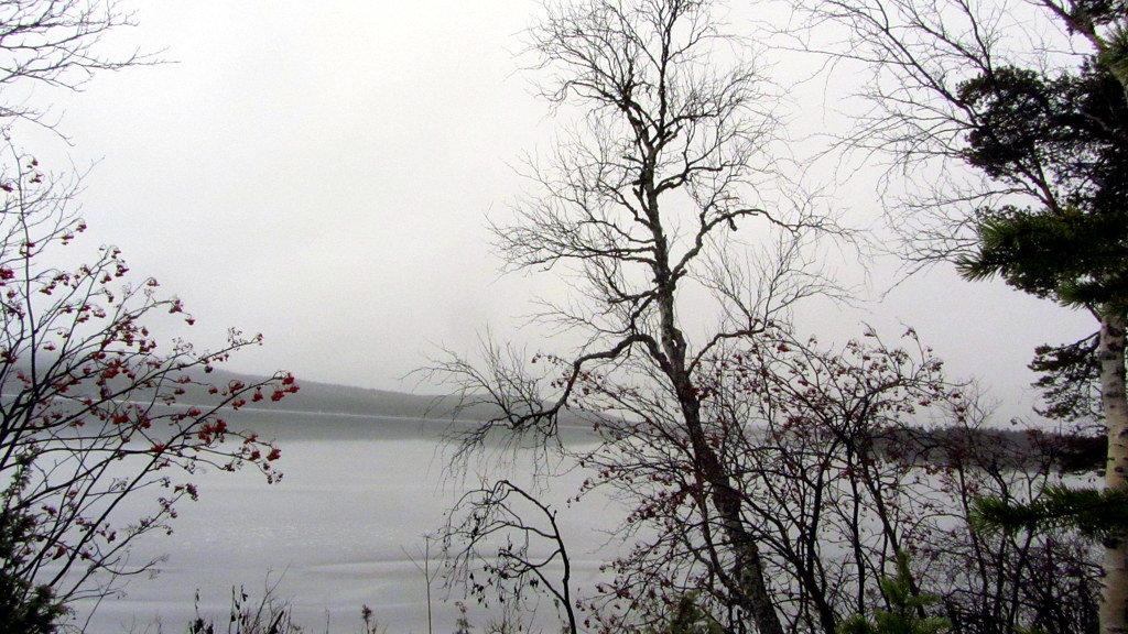 В тумане.. - Галина Полина