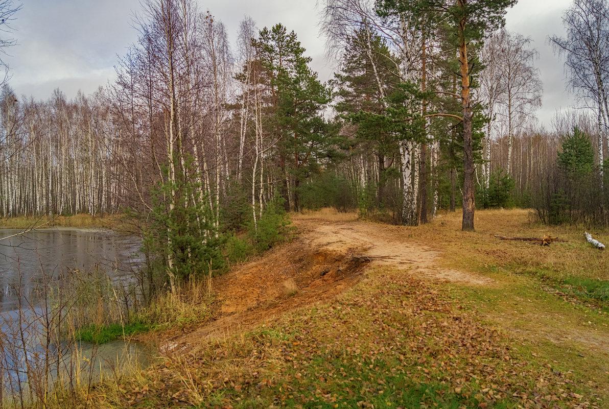 Поздняя осень семнадцатого года 3 - Андрей Дворников