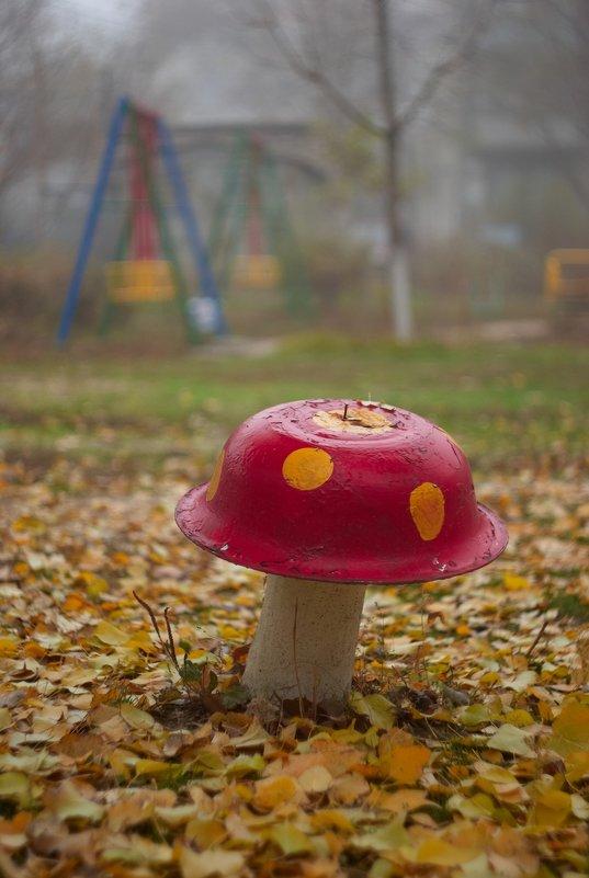 осень - грибная пора - Дмитрий Барабанщиков