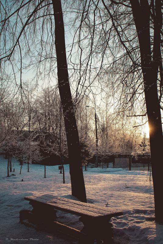 скоро зима - Ольга (Кошкотень) Медведева
