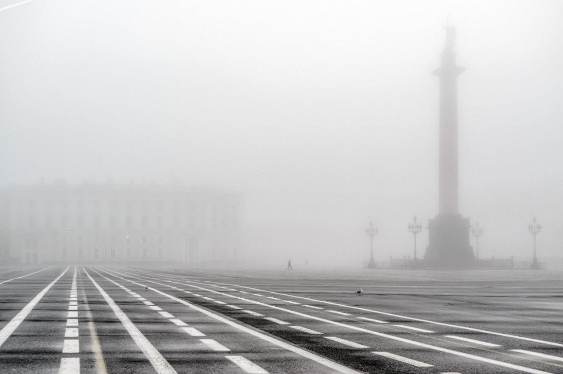 Туман на Дворцовой - Valerii Ivanov