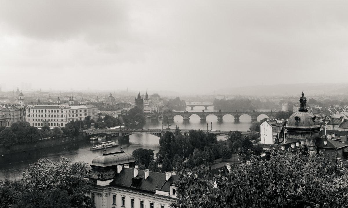Снова в Праге - Андрей Роговой