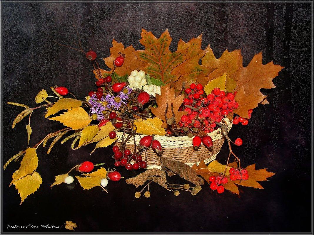 Осенняя фантазия - °•●Елена●•° ♀