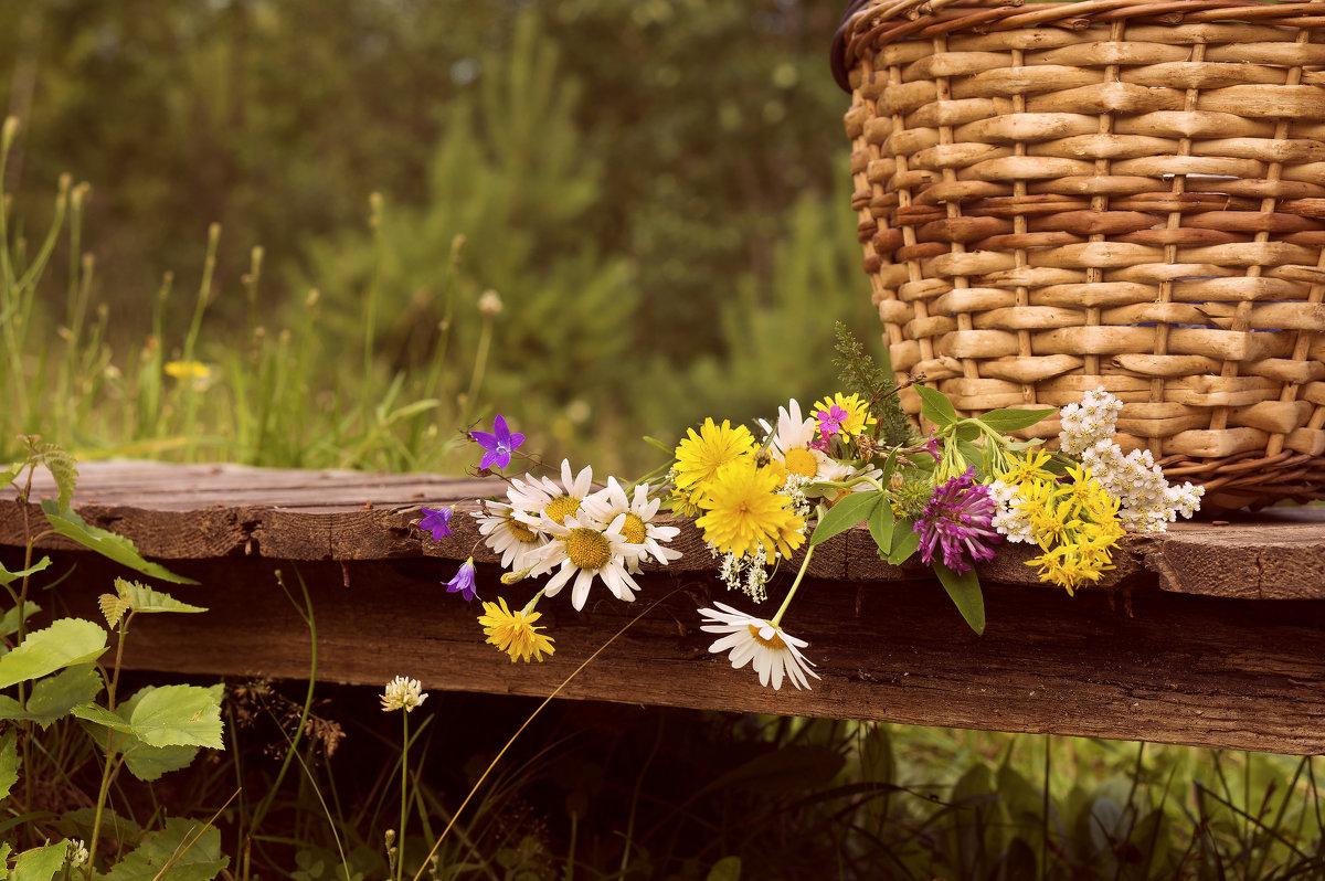 Скромные цветочки - Элен .