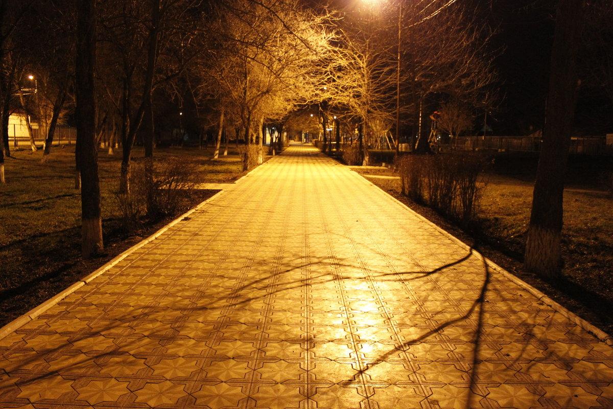 Ночной парк - Алена Д