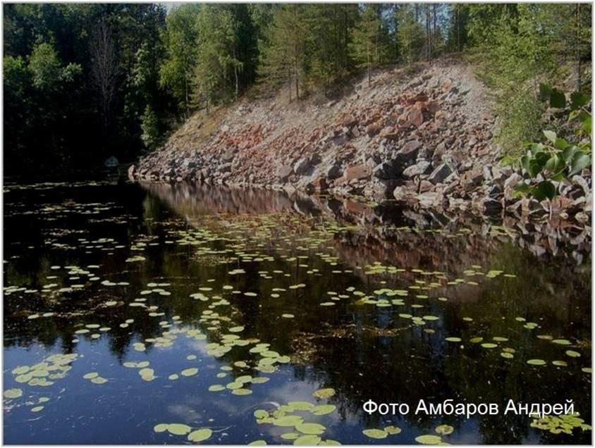 Лесное озеро - Андрей