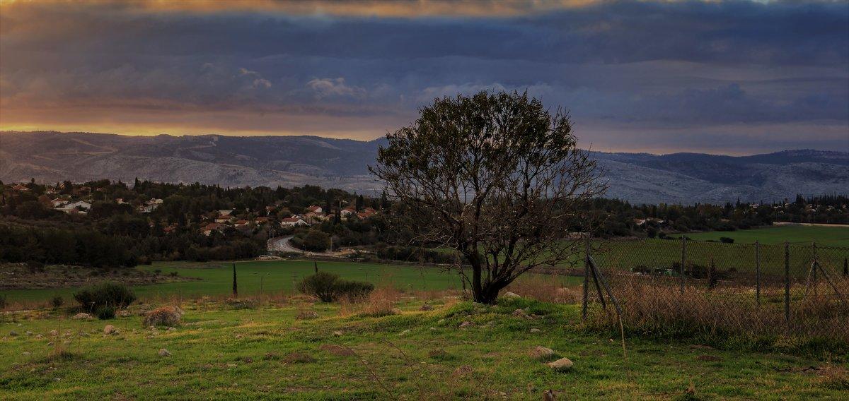 Первое утро Нового года в Израиле - Владимир Сарычев