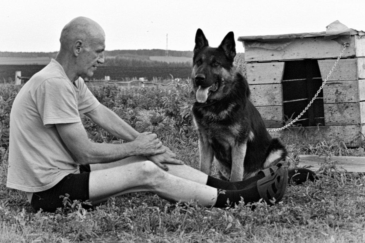 Жизнь собачья... - Евгений Юрков