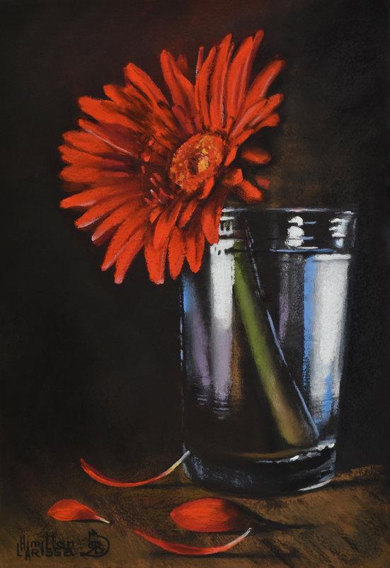 Гербер. (Картина написана пастельными мелками.) - Лара Гамильтон