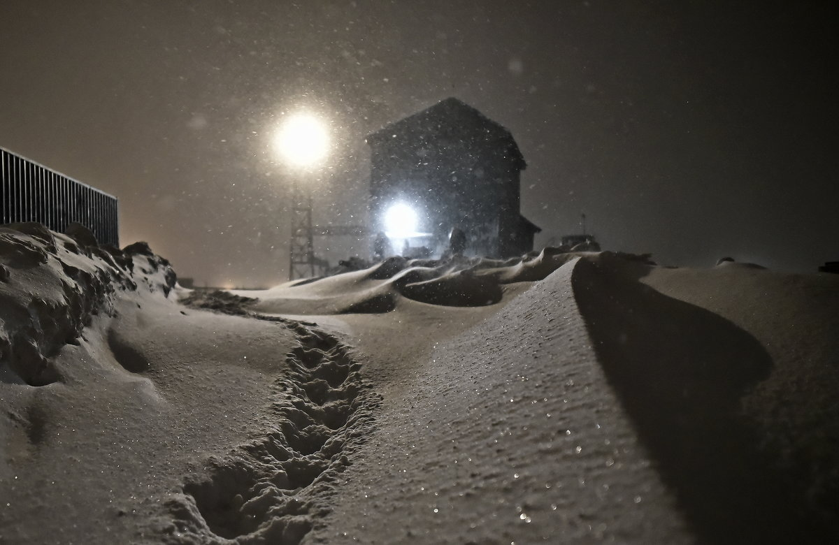 Следы на снегу... - Витас Бенета