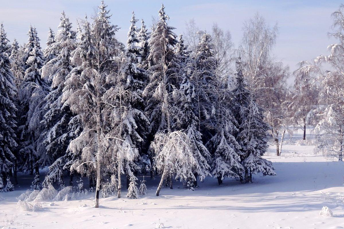 Сказка зимняя - Ирина