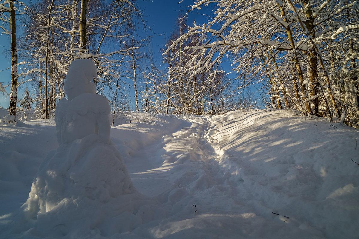 Снежная баба - Андрей Дворников