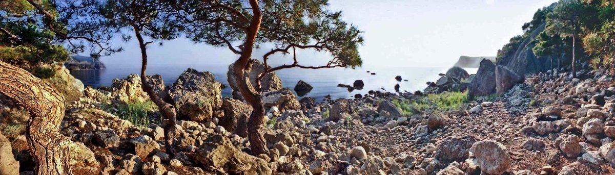 кусочек побережья между Балаклавой и мысом Айя - viton