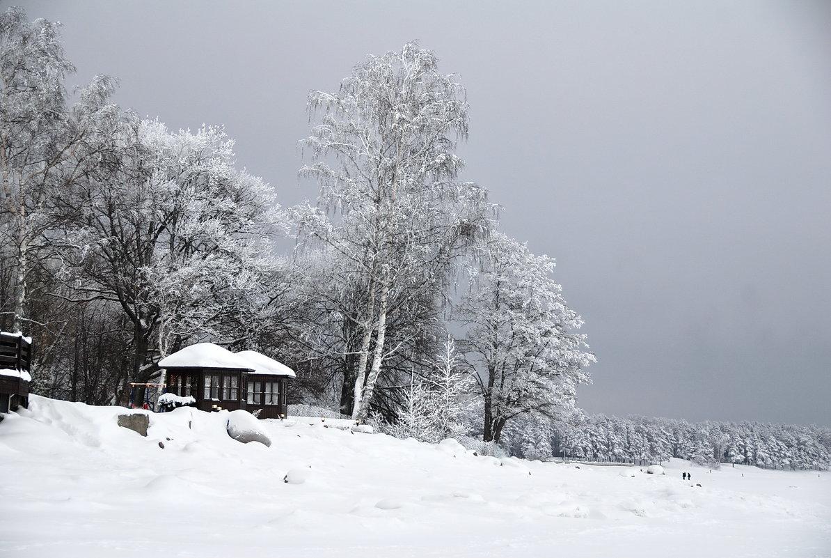 Белое безмолвие - Николай Танаев