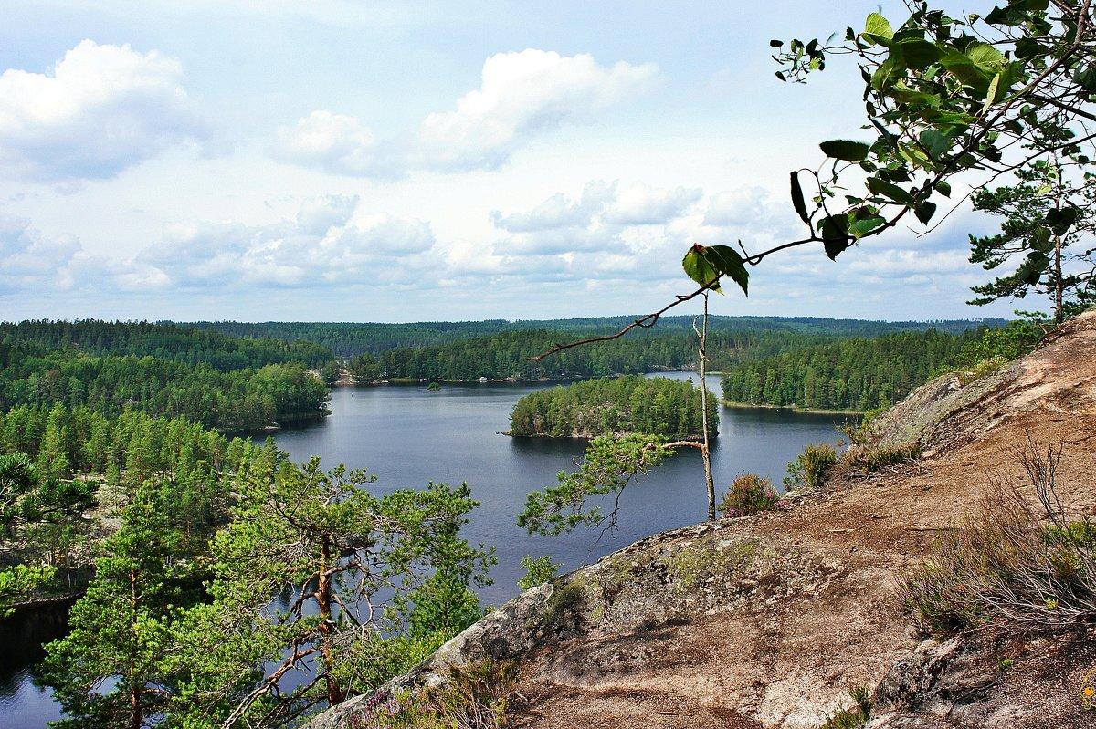 Вид с вершины горы Катаявуори. Озеро Реповеси - Елена Павлова (Смолова)