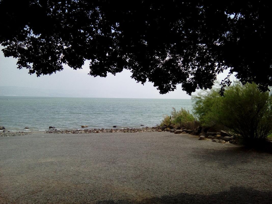 Израиль. Галилейское море. - София