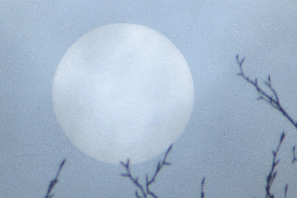 Солнце сквозь туман... - Mariya laimite