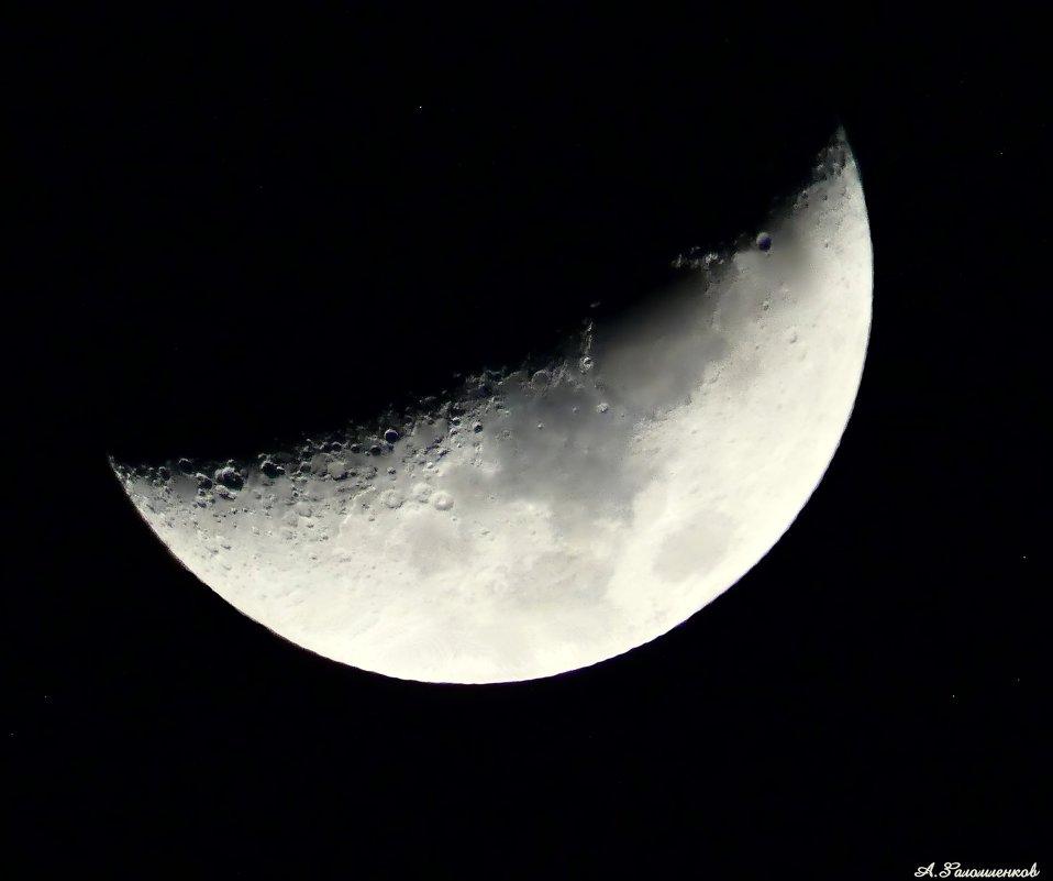 Светит месяц, светит ясный.. - Андрей Заломленков