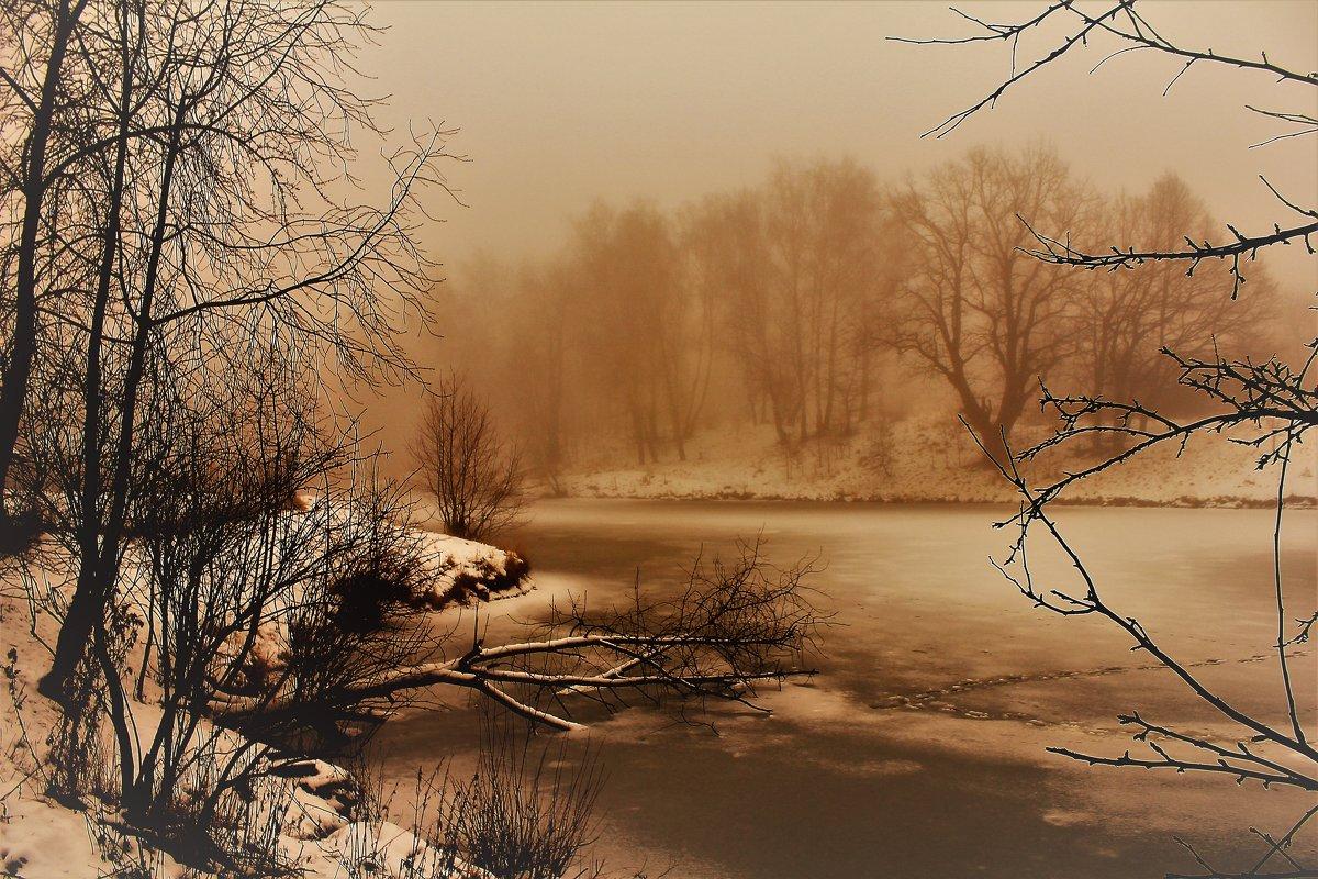 В туманном декабре - Вячеслав Маслов