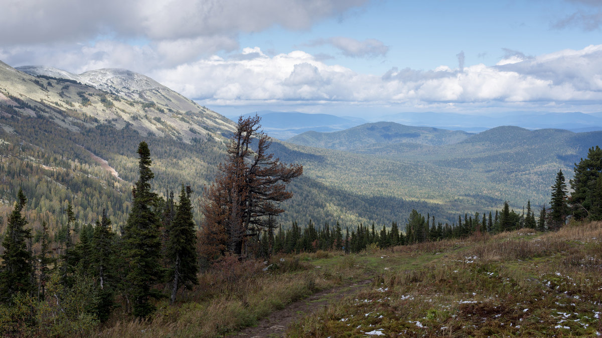 Вид с горы Зеленая - Валерий Михмель