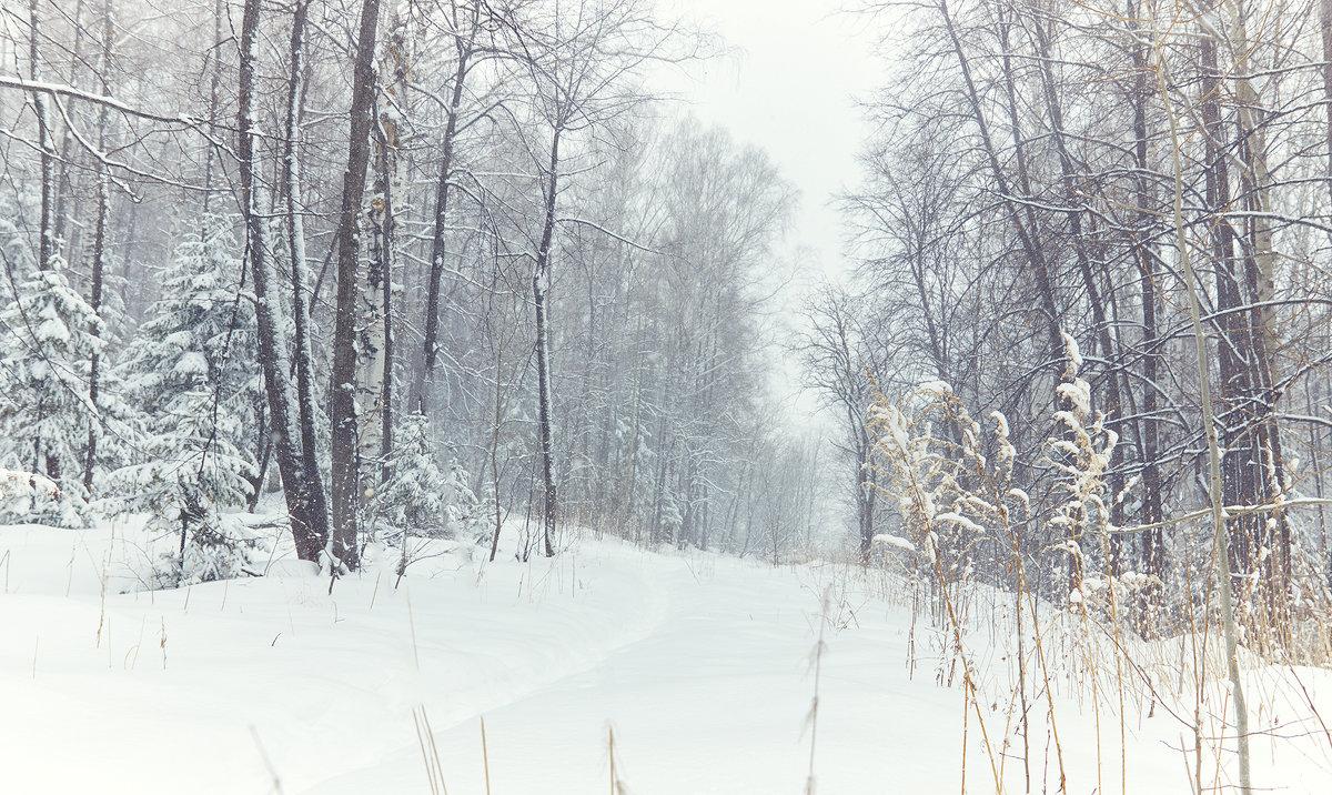 Запомни зиму такой. - андрей