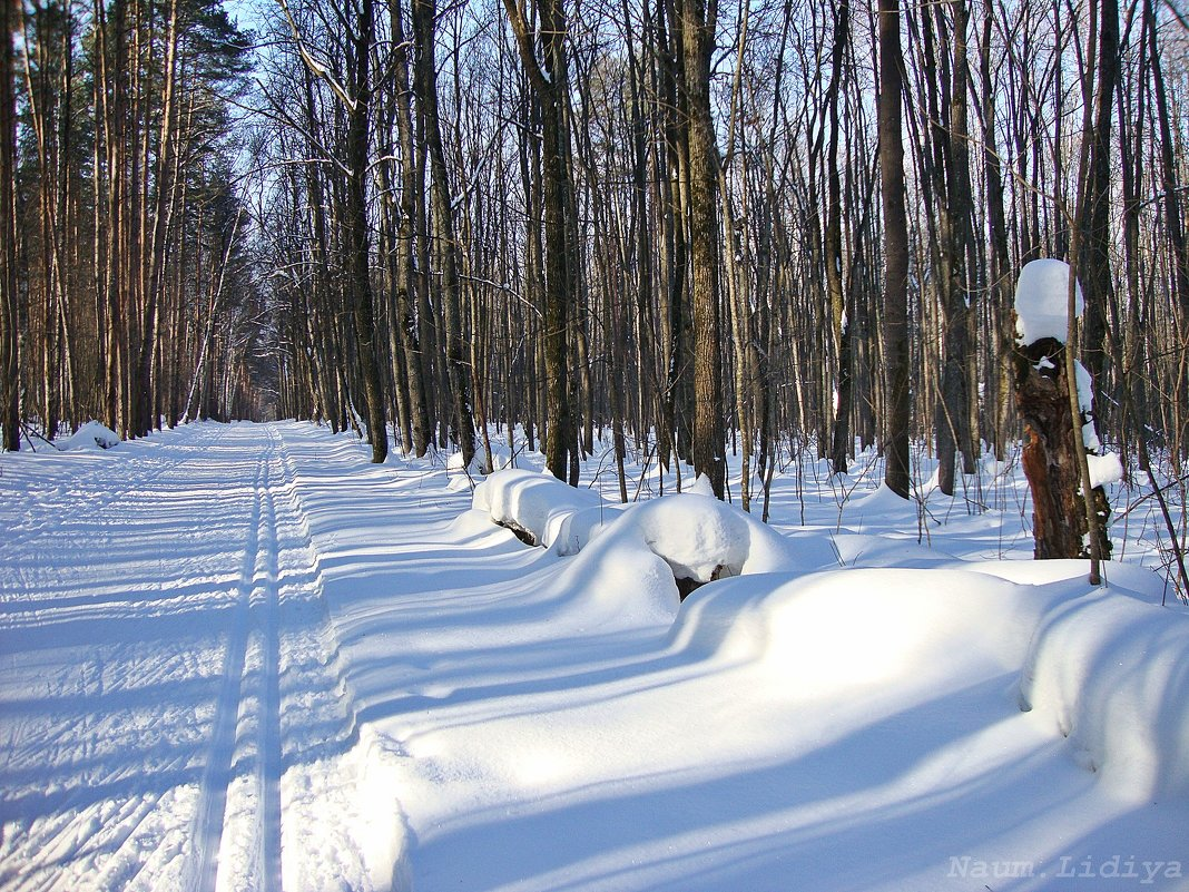 Солнечная,снежная зима к апрелю - Лидия (naum.lidiya)