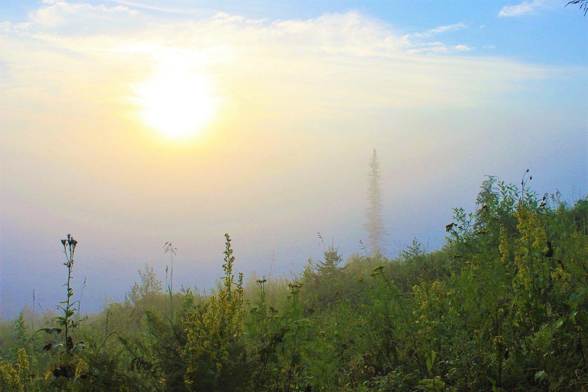 Солнце ещё в дымке тумана - Сергей Чиняев