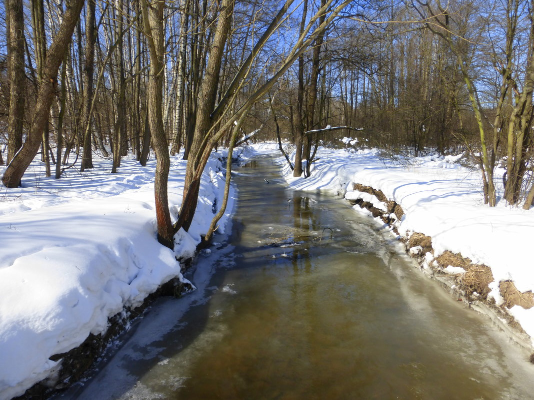 Кисельная речка - молочные берега - Татьяна Лобанова