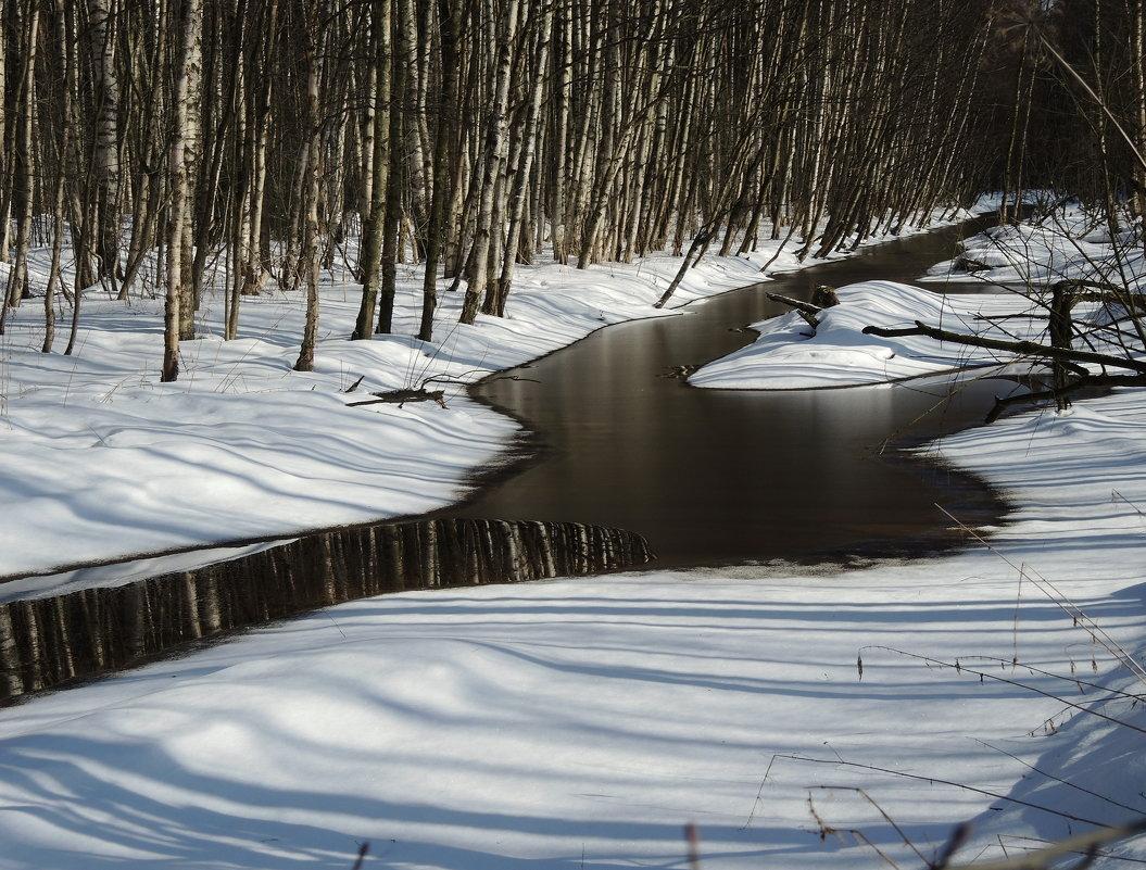 лесной ручей - sv.kaschuk
