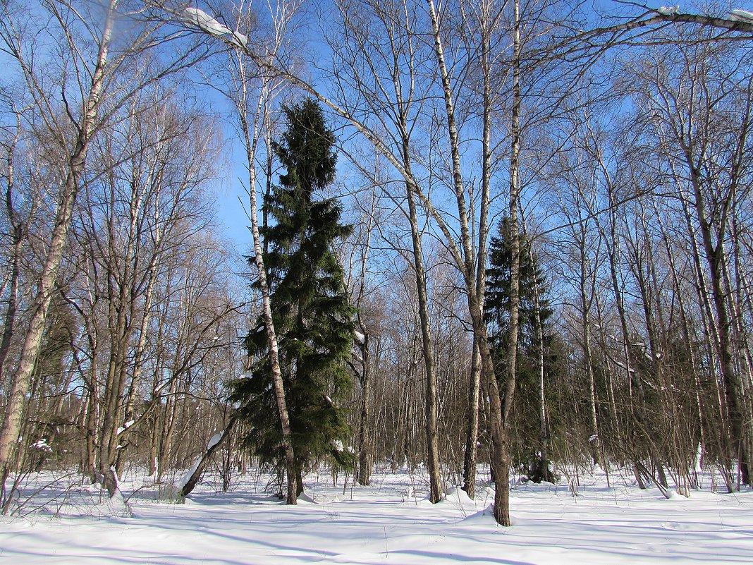 Снежный март - Валюша Черкасова
