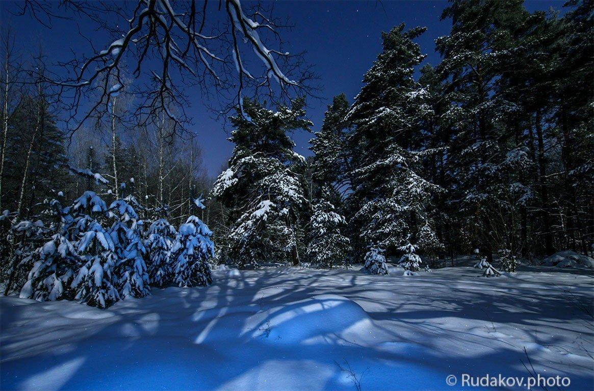 """В сказочном зимненм лесу (из фотоальбома """"Тамбовщина прекрасная"""") - Сергей"""