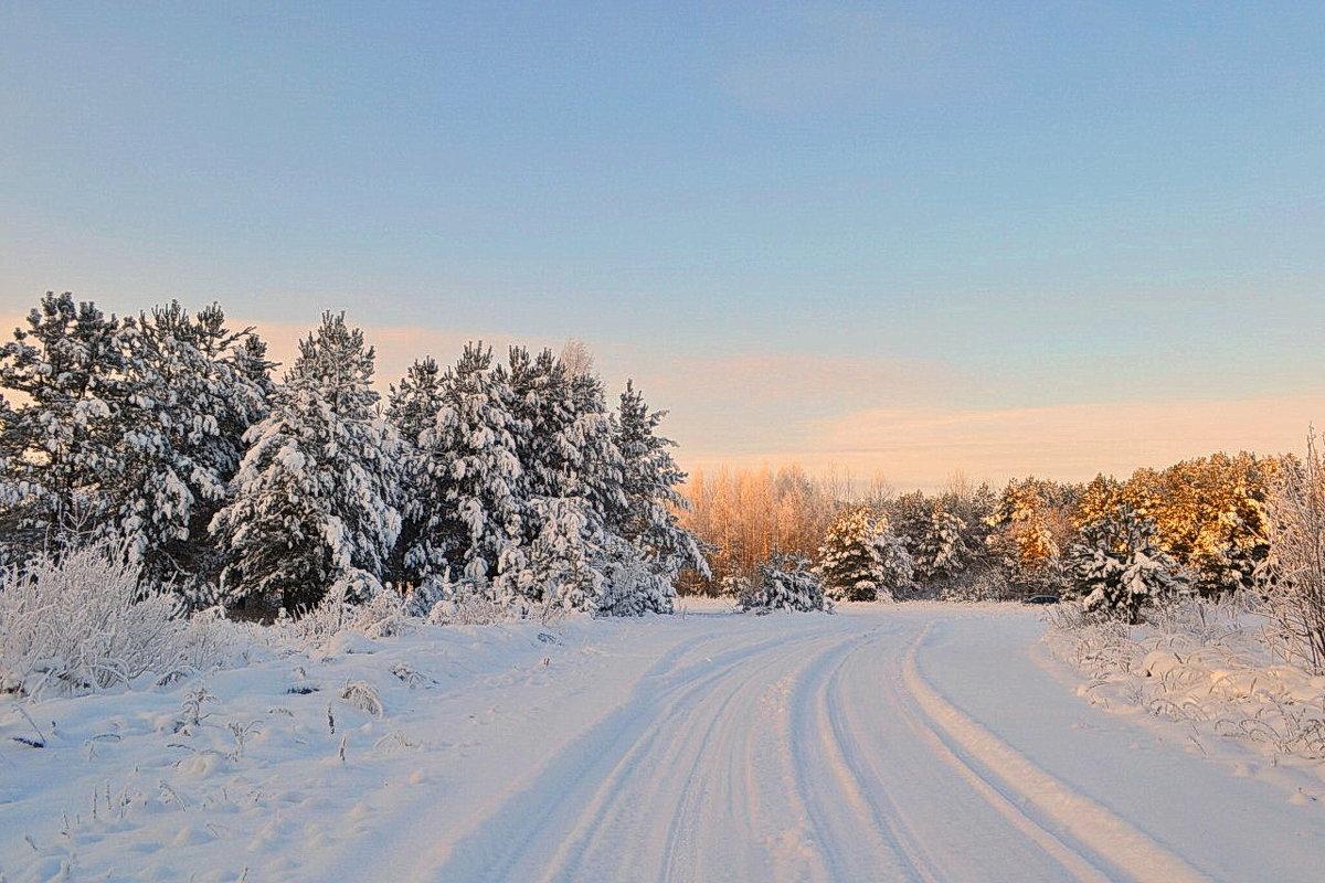 Зимняя дорога - Александр