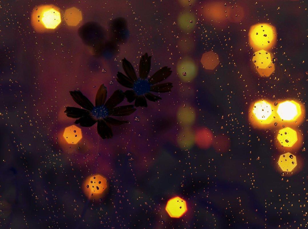 Ночной дождь. - Наталья Соколова