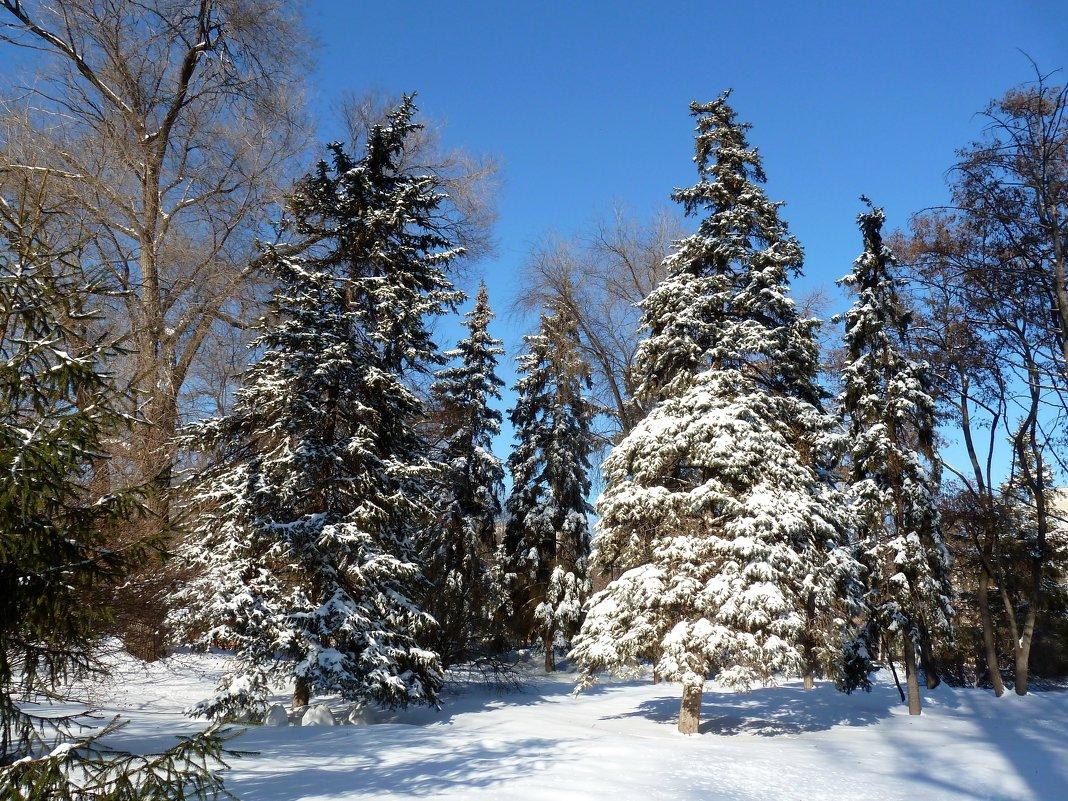 Мороз и солнце - день чудесный! - Лидия Бараблина