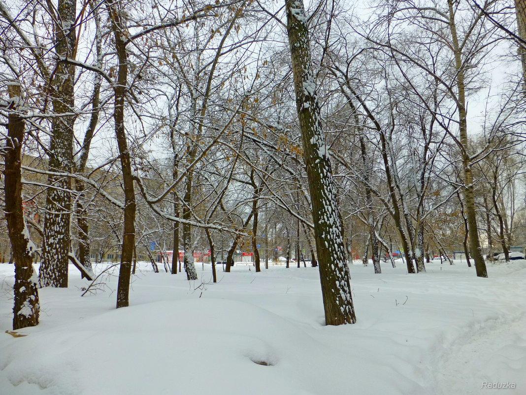 Снег, везде снег - Raduzka (Надежда Веркина)