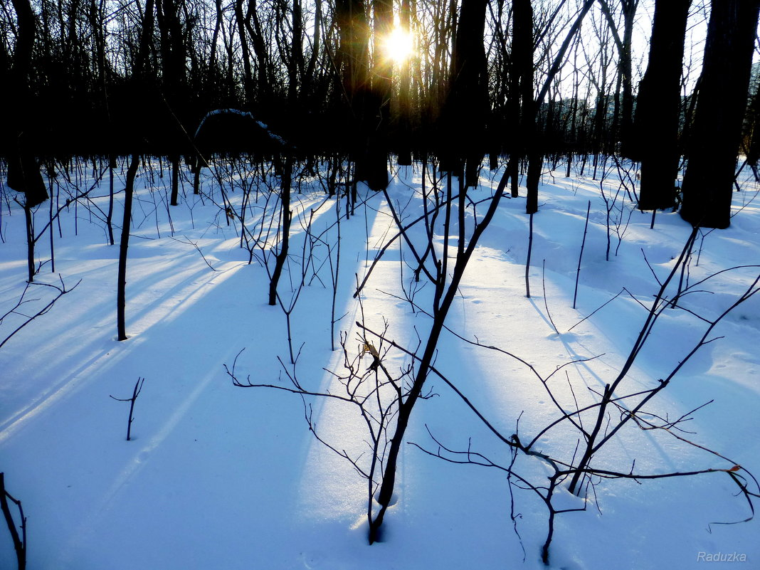 Закатное солнце - Raduzka (Надежда Веркина)