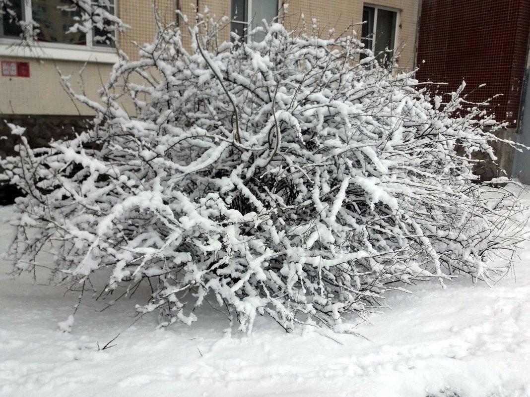 Зима в марте - Агриппина