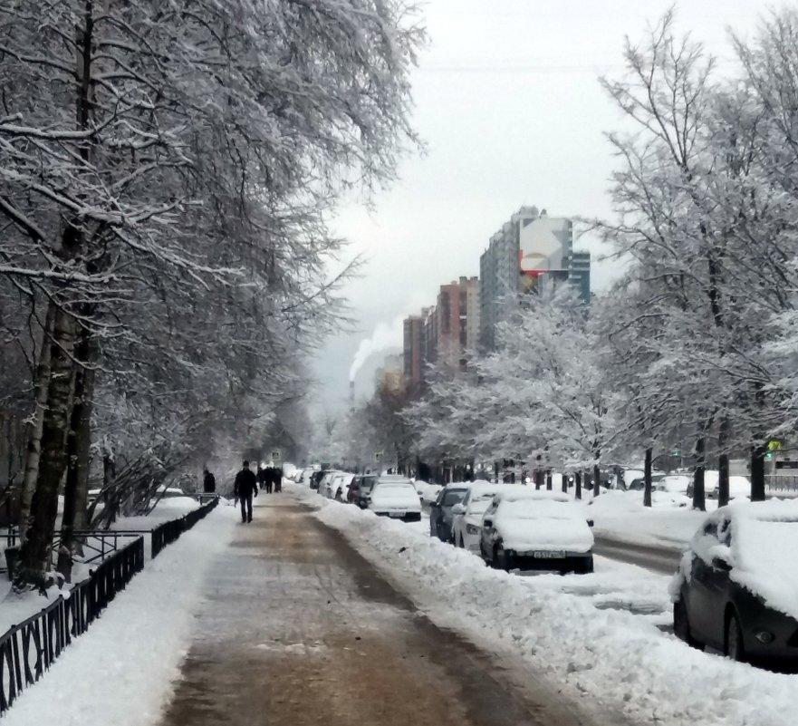 Зима ,зима !!!! - Агриппина