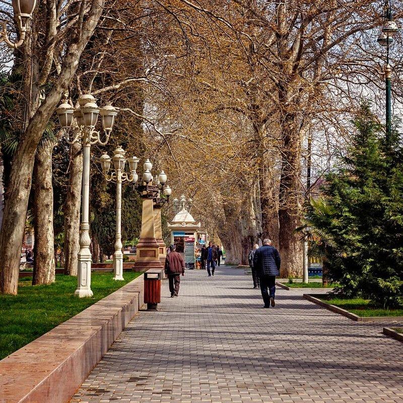 Весна - Vladimir